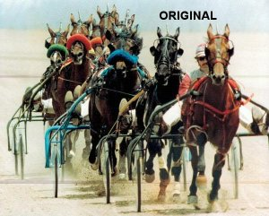 Standardbred Harness Race Cross Stitch Pattern Horses ETP
