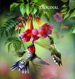 Summer Hummingbird Cross Stitch Pattern Birds ETP