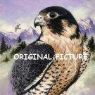 Peregrine Falcon Cross Stitch Pattern Birds ETP