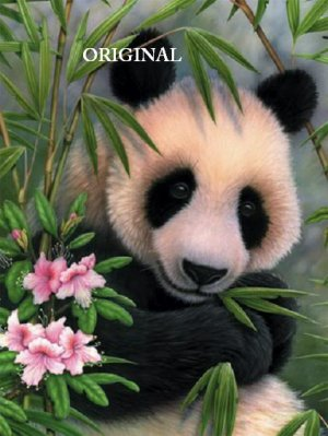 Smashwords — Panda Cross Stitch Pattern —a book by Mother Bee