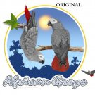 2 Cute African Greys Cross Stitch Pattern Parrots Birds ETP