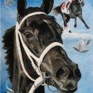 Eight Belles 3 Cross Stitch Pattern Horses ETP