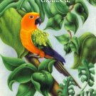 Sun Conure 2 Cross Stitch Pattern Birds Parrots ETP