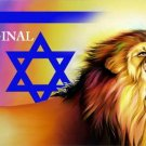 Lion of Judah and Star of David Cross Stitch Pat Jewish ETP