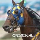 Harness Horse Portrait Cross Stitch Pattern Standardbred ETP