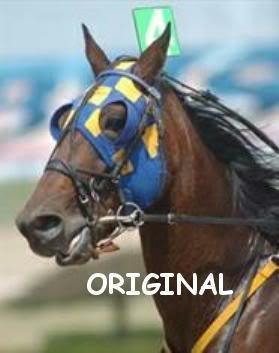 Harness Horse Portrait Cross Stitch Pattern Standardbred ETP