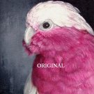 Pink Galah Cockatoo Cross Stitch Pattern Parrots Birds ~ETP~