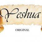 Yeshua Scroll Cross Stitch Pattern Christian Messianic ~ETP~