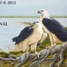 2 Sea Eagles Cross Stitch Pattern Birds ~ETP~