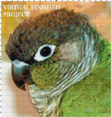 Green Cheek Conure Cross Stitch Pattern Parrots ETP