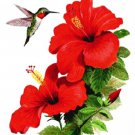 Humming Bird & Hibiscus... ~Counted~ Cross Stitch Pattern ~Computer Generated~ ETP