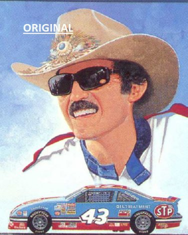 Richard Petty Car #43... ~Counted~ Cross Stitch Pattern ETP