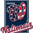 Washington Nationals Baseball... ~Counted~ Cross Stitch Pattern ETP