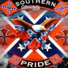 Southern Pride Rebel Flag... Confederate ~Counted~ Cross Stitch Pattern ETP
