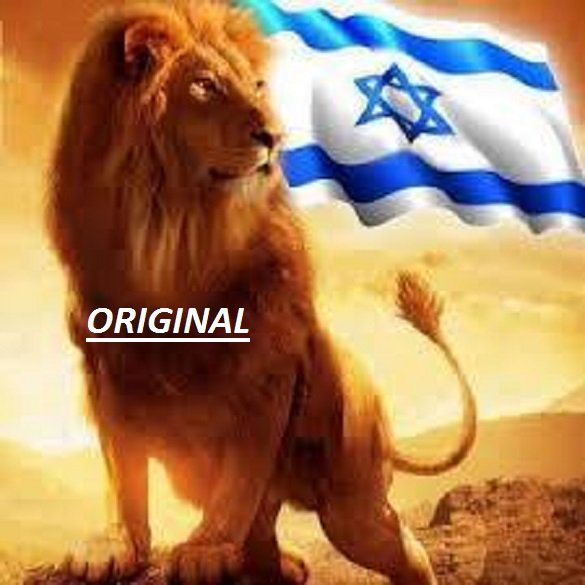 Israel ~ Lion of Judah... ~Counted~ Cross Stitch Pattern ETP