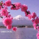 Mt. Fuji Through Cherry Blossoms... ~Counted~ Cross Stitch Pattern ETP
