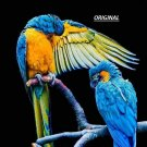 2 Blue & Gold Macaws... ~Counted~ Cross Stitch Pattern ETP