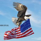 Patriot Eagle... ~Counted~ Cross Stitch Pattern ETP