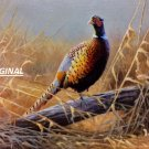 Lone Pheasant... ~Counted~ Cross Stitch Pattern ETP