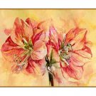Watercolor Amaryllis Notecards Note cards Set of Eight