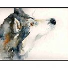 8 Watercolor The Look of a Siberian Husky Greeting Note Cards Notecards