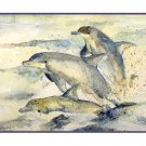 Set of Eight Watercolor Dolphin Greeting Notecards Note Cards