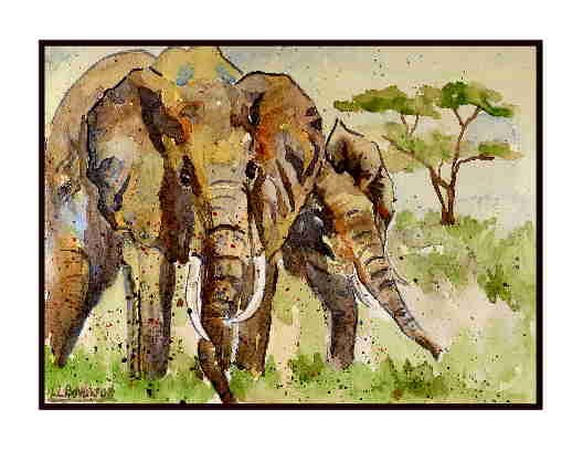Set of Eight Watercolor African Elephants Greeting Notecards Note Cards