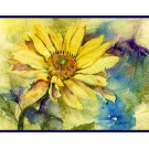 8 Watercolor Yellow Daisy Notecards Note cards