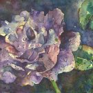 Original Watercolor Purple Rose Painting