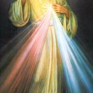 SPANISH Divine Mercy Chaplet Prayer Card PC#222