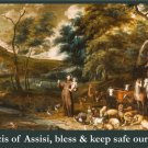 St. Francis Blessing of Animals Prayer Card PC#557