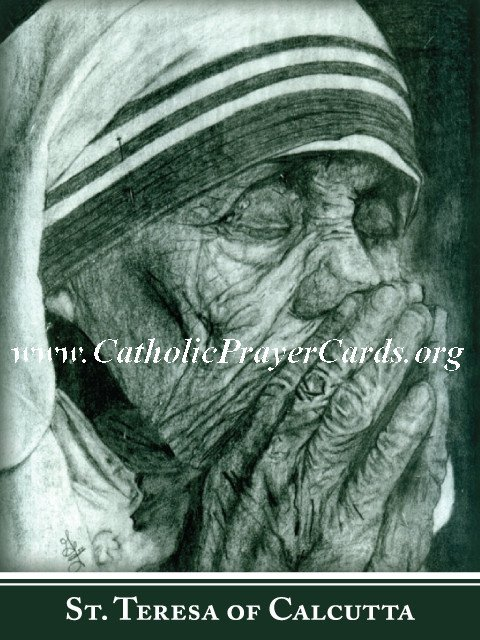 Special Limited Edition Mother Teresa Commemorative Collectors Series Canonization Holy Card PC#559