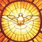 Holy Spirit Magnet Mag#22