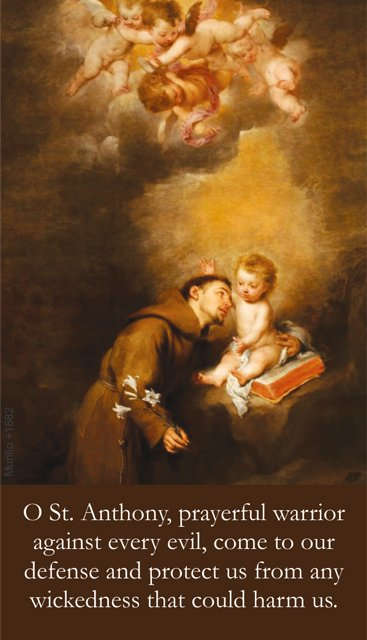 St. Anthony's Brief Prayer Card PC#627