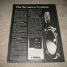 Yamaha NS-500 Speaker Ad from 1977,specs,article