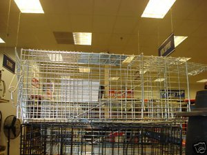 Live Animal Trap Cat Coon Rabbit Squirrel Cage Humane