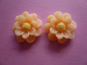 Peach Flower Daisy Cabochons