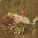 Edwardian SWEET Baby FLOWERS ORG French postcard P112