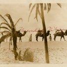Beau GESTE c.1926 Camels DESERT Scene STILL ORG PHOTO