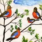 Robins  Watercolor by RWV