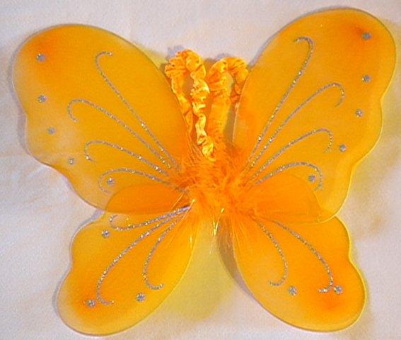 Orange Butterfly Wings