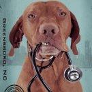 Dog Breed Animal Canvas Print - MPF018