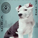 Dog Breed Animal Canvas Print - MPF022