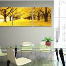 Stretched Canvas Art Landscape Yellow Trees Road Set of 3 -  YAYI001