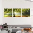 Stretched Canvas Art Landscape Green Tree Set of 3 - YAYI004