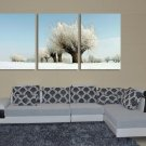 Stretched Canvas Art Landscape Set of 3 - YAYI302