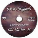 Old Masters II Digital Backdrops Chromakey Photography Backgrounds