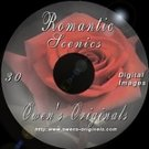 Romantic Scenic Digital Backdrops Chromakey Photography Backgrounds