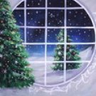 18XMAS Special 8X10 Hand Painted Scenic Backdrop