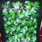 BRAND NEW GREEN WEED LEAF MARIGUANA BIG T SHIRT